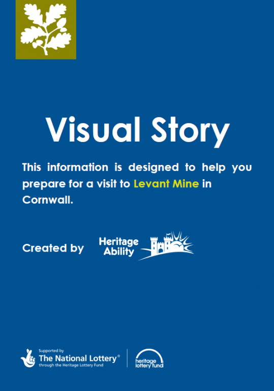 Levant Mine Visual Story